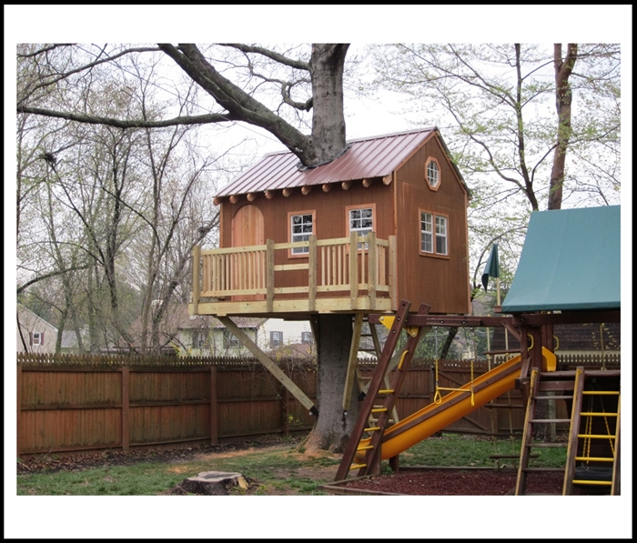Tree House Plans Amp Design